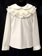 AGATKA блузка длин.рук. съёмный ворот, кремовая (р.128-158) 6 шт.