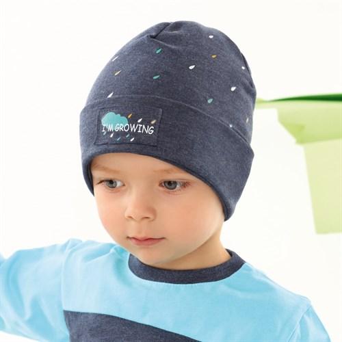 .AJS шапка 42-099 одинарный трикотаж (р.44-46, 48-50) - фото 34117