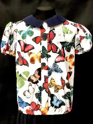 Catherine блузка кор.рук. с резинкой, бабочки цветные (р.128-158) - фото 9916