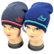 AGBO шапка 2805 LORD двойная вязка (р.46-48)
