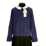 Catherine блузка длинный рукав, прямая, мелкий горох, синяя (р-ры128-158)