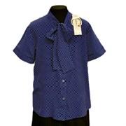 Catherine блузка короткий рукав, прямая, синяя в горох (р.158-170)