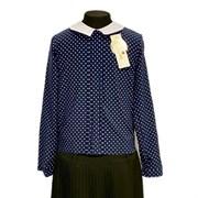 Catherine блузка длинный рукав, прямая, горох, синяя (р-ры128-158)