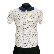 Catherine блузка короткий рукав, прямая, ласточки, белая (р-ры128-158)